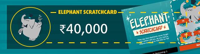 Win the top prize of ₹4,00,000 every month for the next 10 years with the Elephant Scratchcard